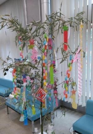 Tanabata0311