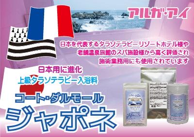 Japonais01